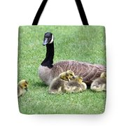 Mother And Young Tote Bag