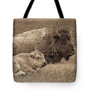 Mother Buffalo And Calf Sepia Tote Bag
