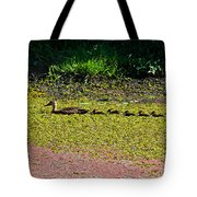 Mother Duck And Baby Ducks Tote Bag