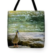 Mother Duck Tote Bag