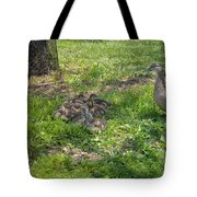 Mother Duck With Nest Tote Bag