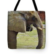 Mother Elephant Tote Bag