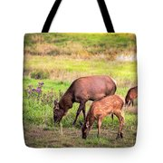 Mother Elk With Her Young Tote Bag
