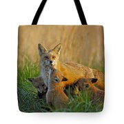 Mother Fox And Kits Tote Bag by William Jobes