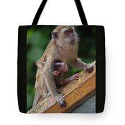 Mother Monkey And Her Baby Tote Bag