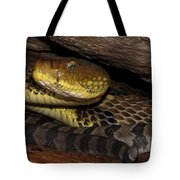 Mother Snake Tote Bag