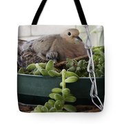 Mother With Baby Mourning Dove Tote Bag