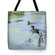 Mother Wood Duck Tote Bag