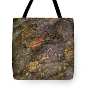 Mothers Abstract 06 Tote Bag