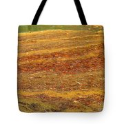 Mothers Abstract 08 Tote Bag