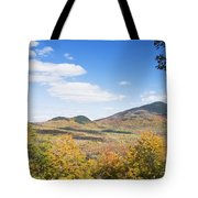 Mount Blue State Park In Fall Weld Maine Tote Bag