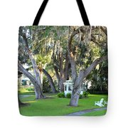 Mount Dora Tote Bag by Carey Chen