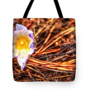 Mount Margaret Spring 14379 Tote Bag