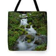 Mount Rainier Brook Tote Bag
