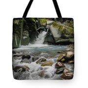 Mount Rainier Falls Tote Bag