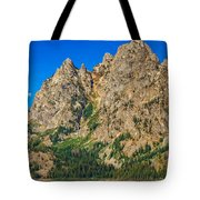 Mount Saint John Tote Bag