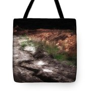 Mount Trashmore - Series Iv - Painted Photograph Tote Bag