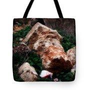 Mount Trashmore - Series Xi Tote Bag