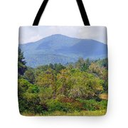 Mountain And Valley Near Brevard Tote Bag