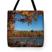 Mountain Ash In Autumn Tote Bag