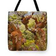 Mountain Beech Rain Forest In Fjordland Np Nz Tote Bag