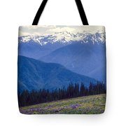 Mountain Color And Snow Tote Bag