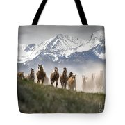Mountain Dust Storm Tote Bag