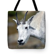 Mountain Goat Feeding Tote Bag