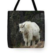 Mountain Goat Kid Tote Bag