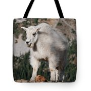 Mountain Goat Kid Standing On A Boulder Tote Bag