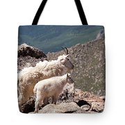 Mountain Goat Nanny And Kid Enloying The View On Mount Evans Tote Bag