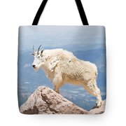 Mountain Goat Up High Tote Bag