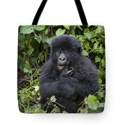 Mountain Gorilla Baby Chewing On Finger Tote Bag