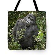 Mountain Gorilla Praying Tote Bag