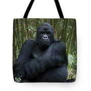 Mountain Gorilla Silverback Tote Bag