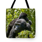 Mountain Gorilla With Infant  Tote Bag