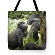 Mountain Gorillas Tote Bag
