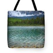Mountain Lake Tote Bag by Elena Elisseeva