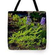Mountain Lupine Tote Bag