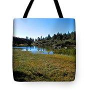 Mountain Marshes 1 Tote Bag