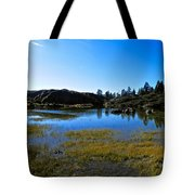 Mountain Marshes 2 Tote Bag