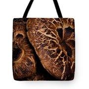 Mountain Mushrooms   #3670 Tote Bag