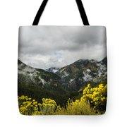 Mountain Rain Tote Bag