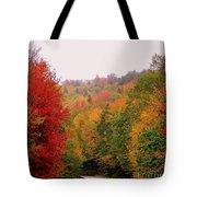 Mountain Road In Fall Tote Bag