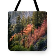 Mountain Side Colors Tote Bag