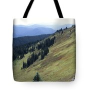 Mountain Slope Tote Bag