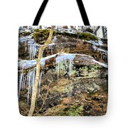 Mountain Spring Beauty  Tote Bag