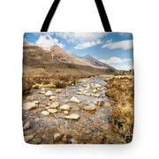 Mountain Stream From Beinn Eighe Tote Bag