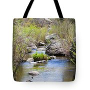 Mountain Stream In Castlewood Canyon State Park Tote Bag