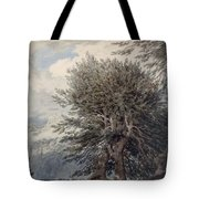 Mountainous Landscape With Beech Trees Tote Bag